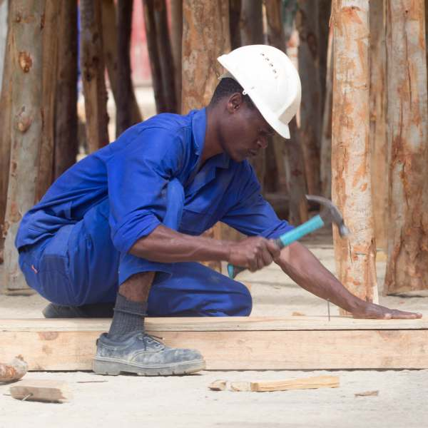 Beehive Construction worker